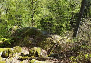 Über den gebrannten Stein zum Veilchenbrunnen