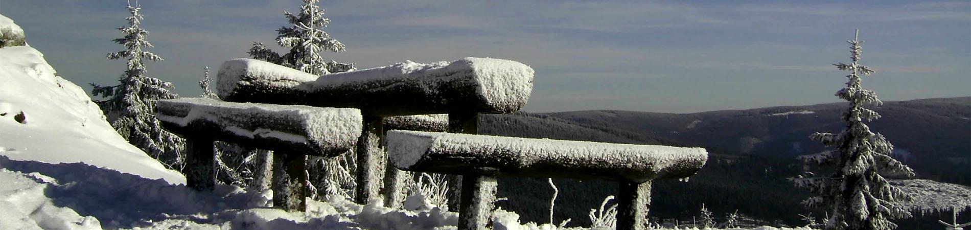 winter_bank_schnee.jpg