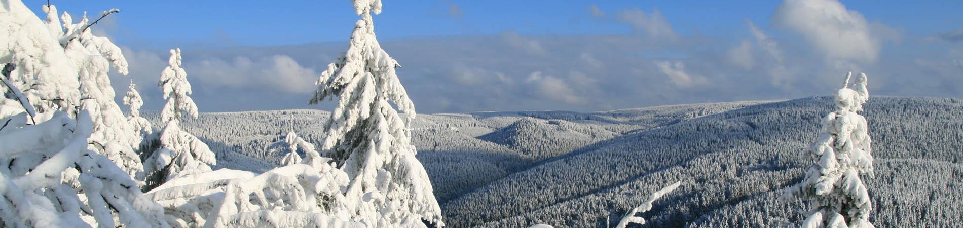 winter_berge.jpg