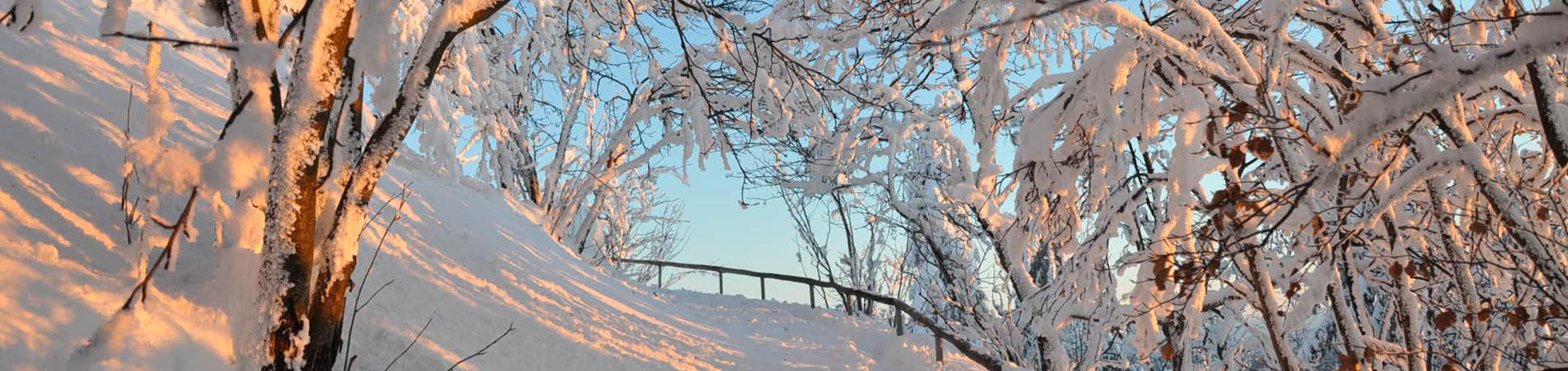 Winterwanderweg zum Ruppberg