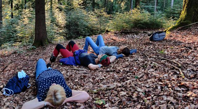 Heilsames Schlendern - Der etwas andere Waldspaziergang